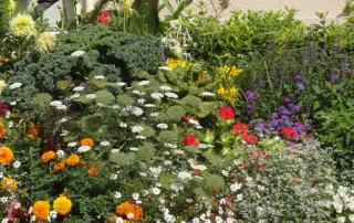 2015 juin for Conseil de jardinier