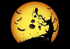 mediat-halloween