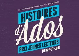 mediat-histoires-dados-2017