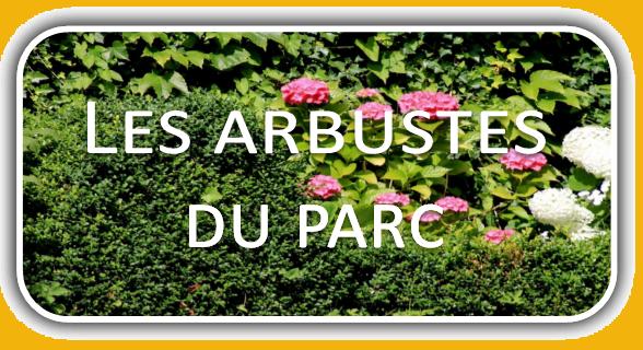 Miniat-arbustes_du_parc